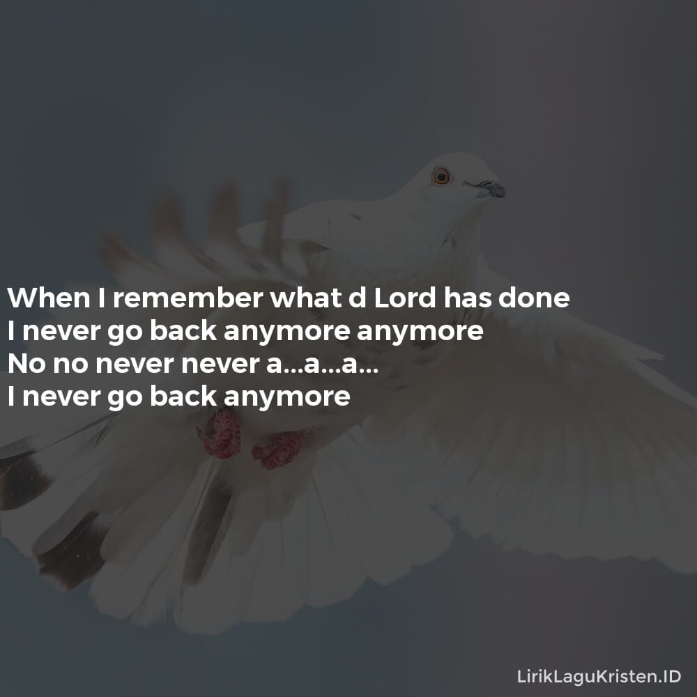 NEVER GO BACK ANYMORE